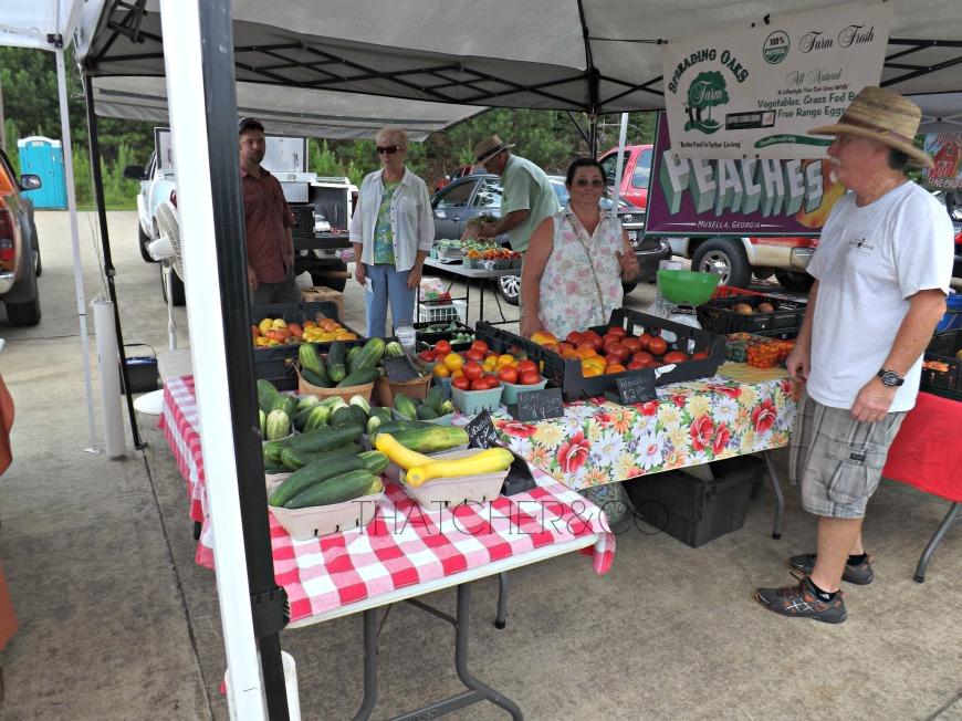Spreading Oaks Farm