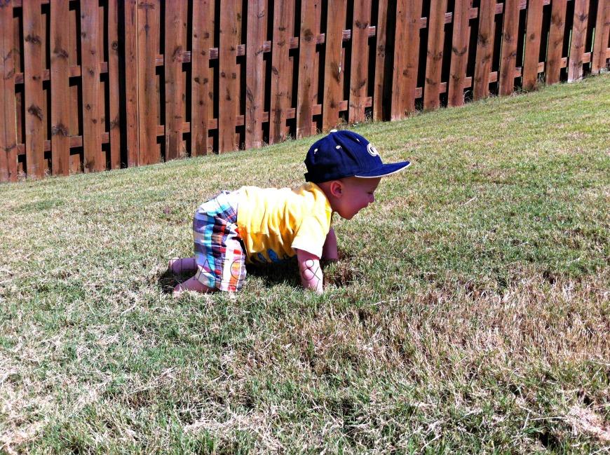 Grass Crawling